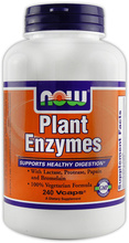 Plant Enzymes (NOW)
